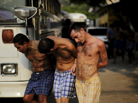 El Salvador prison now allows rival gang members to share cells