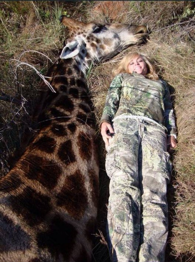 """Rebecca Francis Extreme Huntress Rebecca Francis targeted online for hunting pictures Francis, who grew up in Utah and in 2010 won a US-based reality television show competition called Extreme Huntress, says she learned to hunt from an early age and wants to """"share my passion with everyone, especially other women"""". On her website she boasts of fulfilling her dream of completing the Grand Slam of North America by shooting dead every subspecies of sheep with a bow and arrow."""
