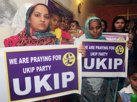Ukip finds a new surge of support… from Pakistan