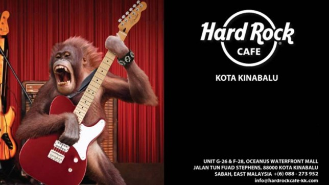 KUALA LUMPUR, Malaysia -- Hard Rock Cafe on Tuesday withdrew a promotional campaign in Malaysia after public anger at the photoshopped depiction of an orangutan baring its teeth and playing an electric guitar.