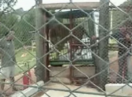 Will in the cage before the release (Picture: YouTube)