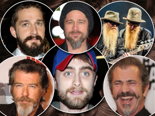 silly beard comp
