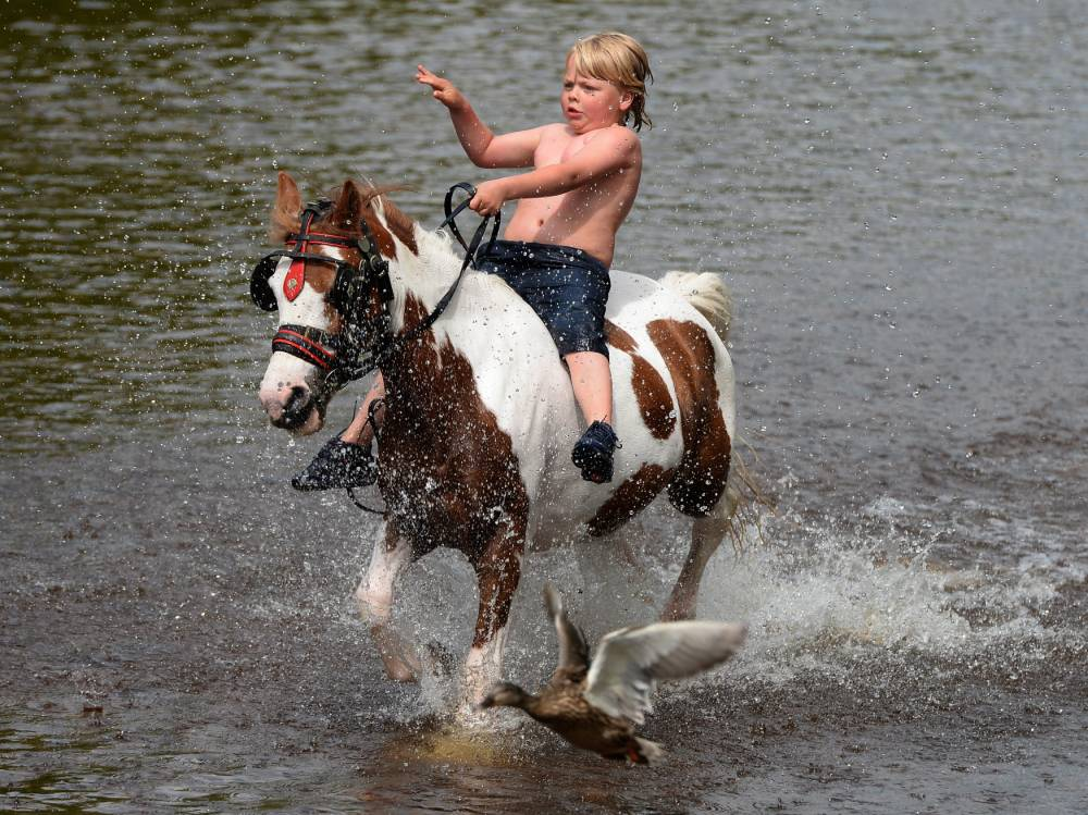 See what 10,000 travellers get up to at Appleby Horse Fair