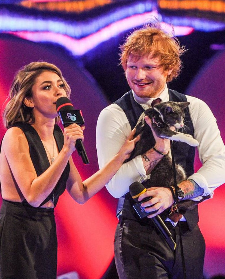 Ed Sheeran just became even more adorable after hosting a music awards bash – with a cat