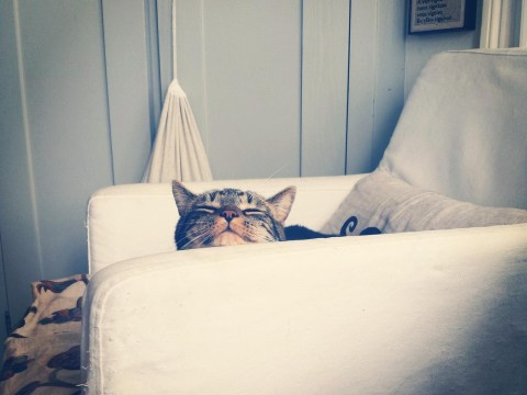 14 things that happen when you go home for the weekend