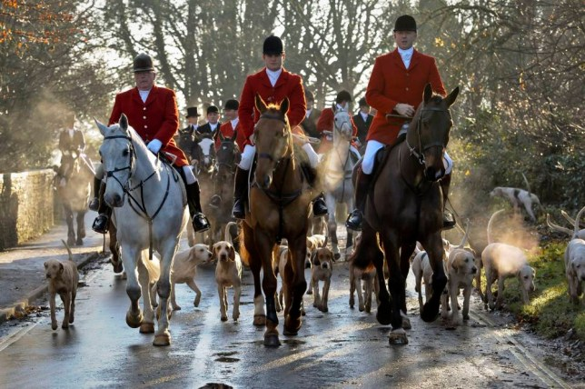File photo dated 26/12/2013 of the Avon Vale hunt making its way to the village of Laycock, Wiltshire. Sir Paul McCartney has warned the Government it will lose the support of the people of Britain if fox hunting is reintroduced. PRESS ASSOCIATION Photo. Issue date: Friday July 10, 2015. His comments come after ministers put forward changes to the Hunting Act to bring England and Wales in to line with Scotland on using dogs to flush out foxes to be shot. See PA story ENVIRONMENT Foxhunting. Photo credit should read: Ben Birchall/PA Wire