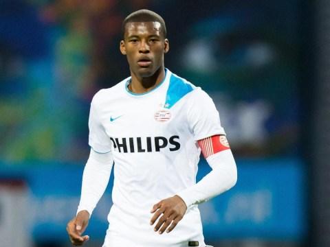 Newcastle 'close to Georginio Wijnaldum transfer after hijacking Sunderland's deal'