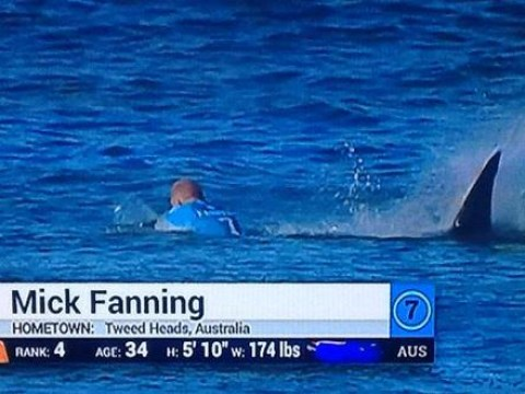 Surfer Mick Fanning fights off shark attack during World Surf League event in South Africa