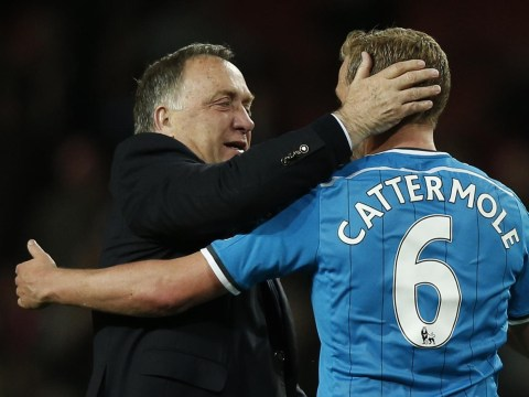 Lee Cattermole will be the signing of the summer for Sunderland boss Dick Advocaat