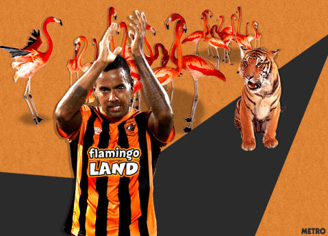 Hull City announce Flamingo Land as new kit sponsors, here's what their kit could look like: