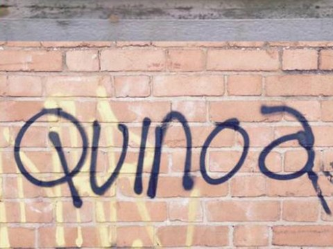 15 examples of exceptionally middle class graffiti