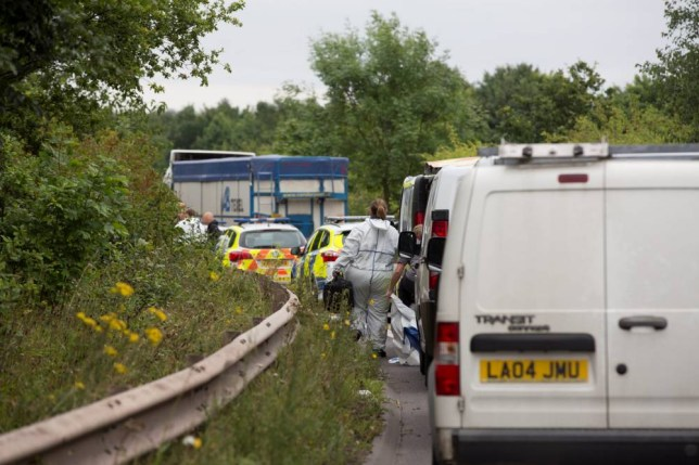"""Police cars and forensic vans line the slip road onto the M54 at Junction 4 near Telford that remains partly closed after a human skull was found there on August 20 during a survey of the embankment. August 21 2015. Workers had a shock when they discovered a human SKULL on a motorway sliproad. See NTI story NTISKULL: The grim remains were found during a """"routine survey"""" of the embankment at junction four of the M54 near Telford, Shrops. Police shut the eastbound sliproad after the skull was found in heavy undergrowth by a worker who was in a hollow down a steep bank. Detectives and forensic investigators could be scene working at the site yesterday afternoon."""