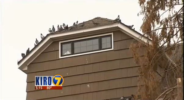 Residents in Seattle are now suing Gabi Mann's parents (Picture: Kiro 7)