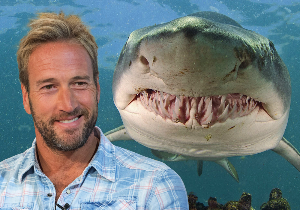 Ben Fogle wants to prove there are great white sharks near British beaches