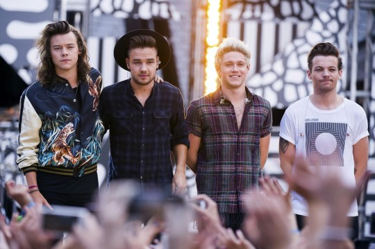 Niall Horan on rumours Harry Styles and Louis Tomlinson hate