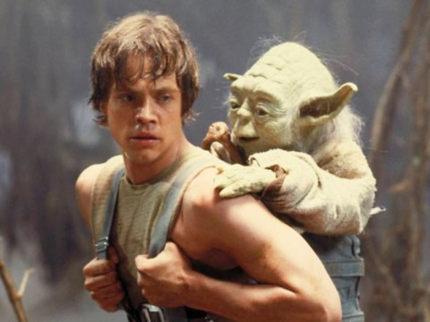 Is Luke Skywalker a Jedi jihadi radicalised by Yoda? This Star Wars fan theory thinks so