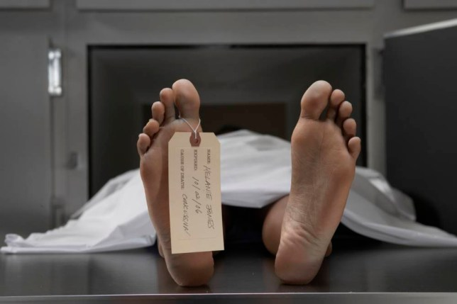 What happens to the human body after death explained in