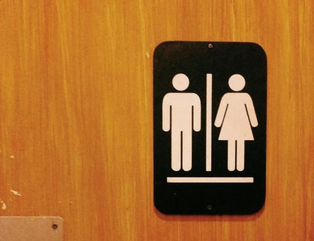 Close-Up Of Toilet Sign On Wooden Door
