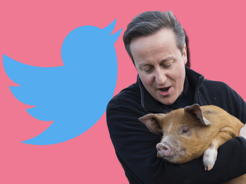 David Cameron tweeted for the first time since #piggate and it didn't go very well