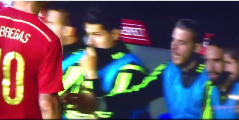 Chelsea's Cesc Fabregas snubs Manchester United star David De Gea's handshake offer