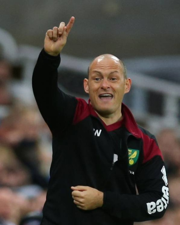 NEWCASTLE, ENGLAND - OCTOBER 18: Norwich City Manager Alex Neil reacts during the Barclays Premier League match between Newcastle United and Norwich City at St James Park on October 18, 2015 in Newcastle, England. (Photo by Ian MacNicol/Getty images)