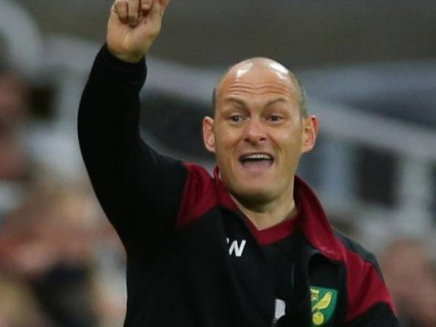 How can Alex Neil's Norwich City bounce back from their thrashing at Newcastle?