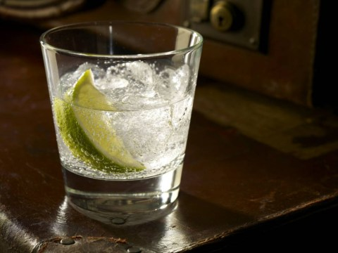 Red alert: We might be facing a national gin shortage