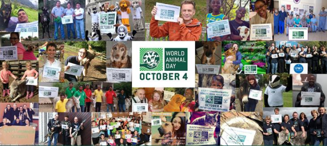 World Animal Day (Picture: Twitter)