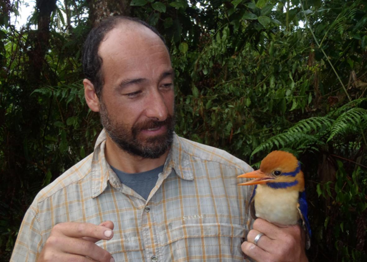Scientist kills rare bird only moments after it was photographed for the first time