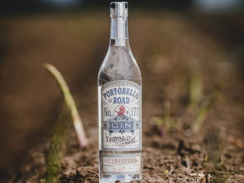 Asparagus gin is probably the most middle class liquor of all time