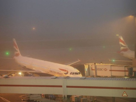 Hundreds of flights cancelled as fog causes travel chaos