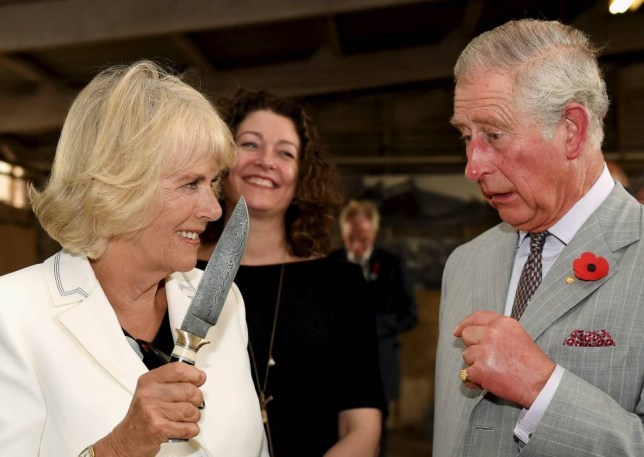 Britain's Prince Charles watches on as Camilla, Duchess of Cornwall holds a knife as they visit Seppeltsfield Winery in South Australia's Barossa Valley, November 10, 2015. REUTERS/Daniel Kalisz/Pool TPX IMAGES OF THE DAY