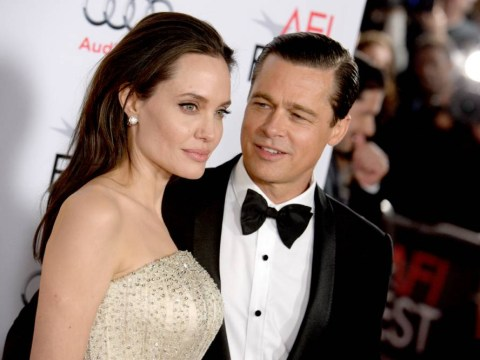 Angelina Jolie and Brad Pitt are 'planning on expanding their brood again by adopting a 7th child'