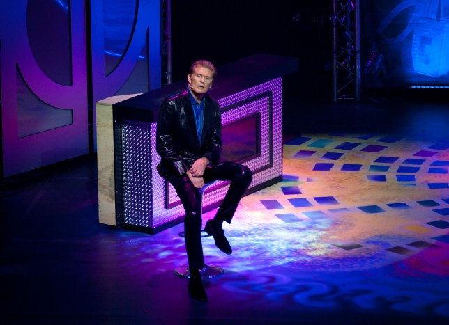 David Hasselhoff as Ross in Last Night A DJ Saved My Life CREDIT LINDA LUSARDI