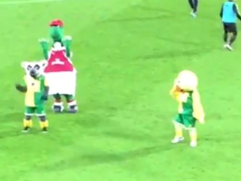 Arsenal's Gunnersaurus takes on and beats Norwich's Captain Canary in mascot dance off
