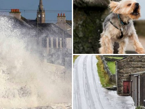 In pictures: Flooding and snow as Storm Abigail hits Britain