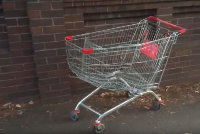One man dies and another is seriously injured following the trolley accident (Picture: YouTube/NewVids)