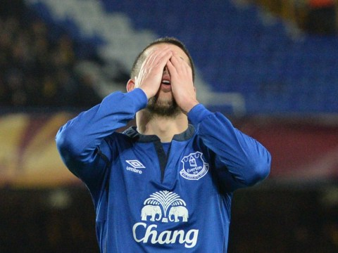 Everton must not sell Kevin Mirallas or Steven Naismith in the January transfer window