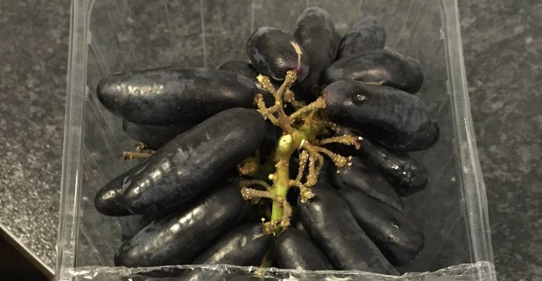 These are without a doubt the creepiest grapes you'll ever see