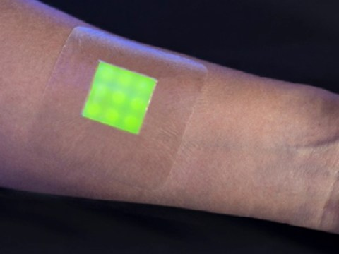 This amazing new plaster glows fluorescent when it detects infection