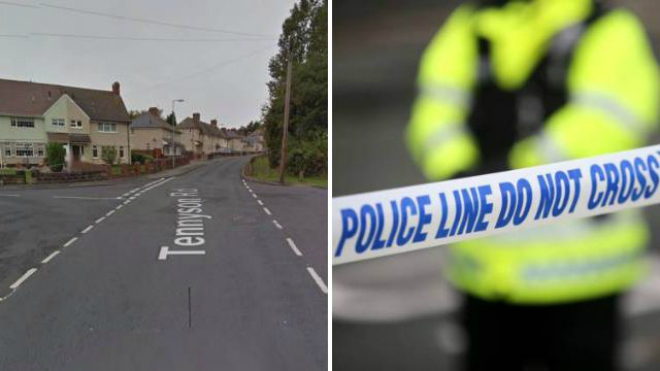 Woman and 11-year-old boy were 'struck deliberately' by hit and run driver