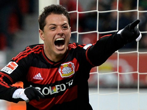 Why Arsenal should not make a transfer move for fromer Manchester United striker Javier Hernandez