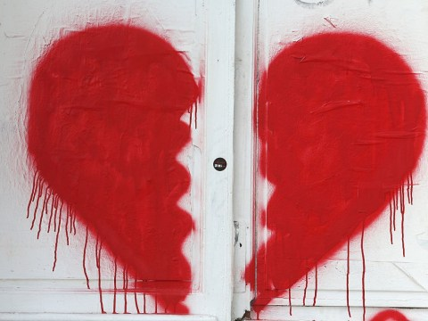 Scientists to discover what becomes of the broken hearted