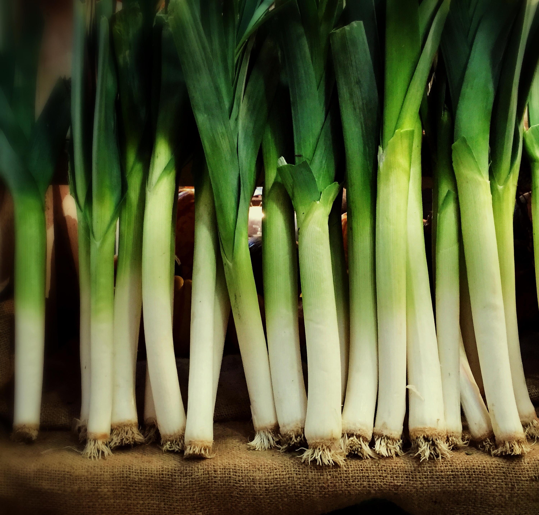 Row of fresh organic green leeks in a farm market stall