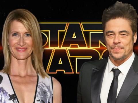 Star Wars: Episode 8 casts Benicio Del Toro and Laura Dern as teaser emerges