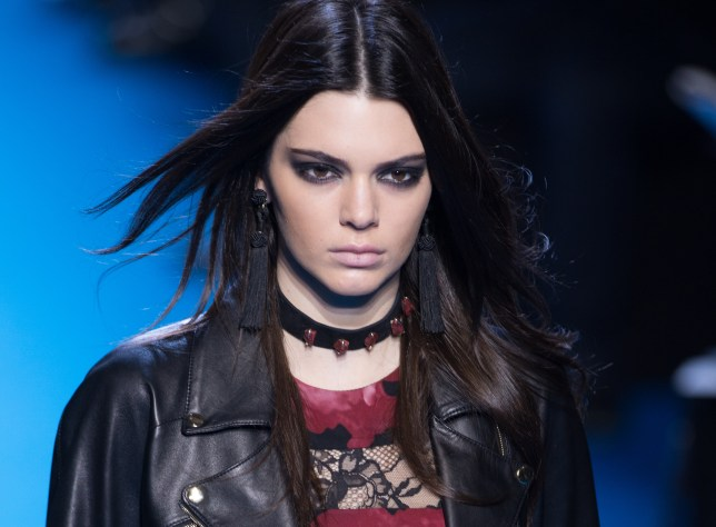 Fans of Kendall Jenner are fearing for her safety amid Chris Brown dating rumours (Picture: Thierry Orban/Getty Images)
