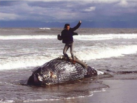 Winning entry in Japanese photo competition shows man standing on a beached whale