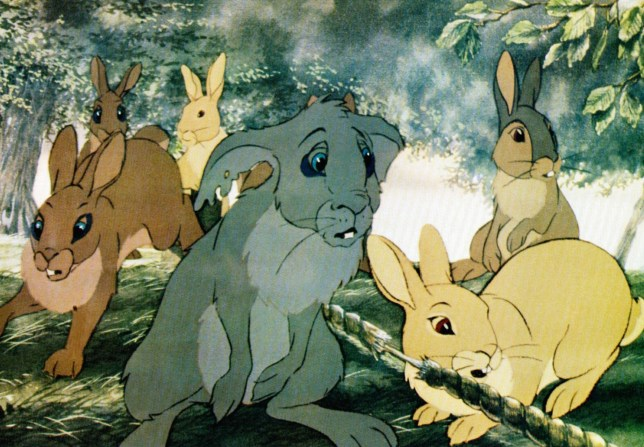 No Merchandising. Editorial Use Only. No Book Cover UsagenMandatory Credit: Photo by Everett/REX/Shutterstock (1359070a)nWatership Downn'Watership Down' Film - 1978nn