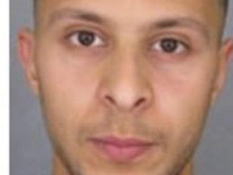 Paris attacks suspect was 'planning to act again'