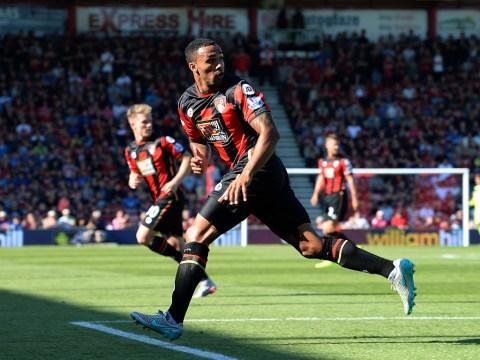 Tottenham target transfer for Bournemouth striker Callum Wilson